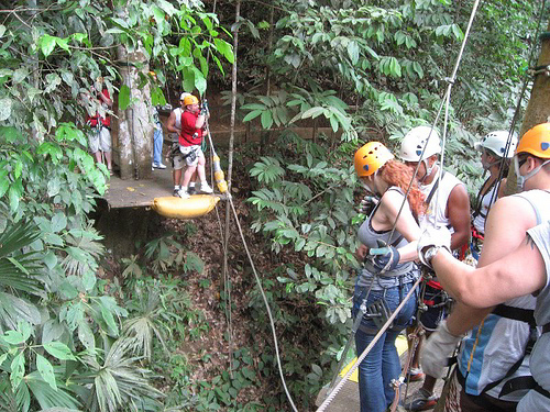 Activities In Victoria Falls Now Includes Canopy Tours
