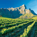 13 Days Southern Africa Explorer Tour