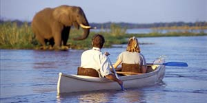 Marula Safari Package