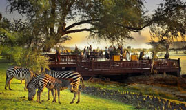 Royal Livingstone Deck with Zebra feeding